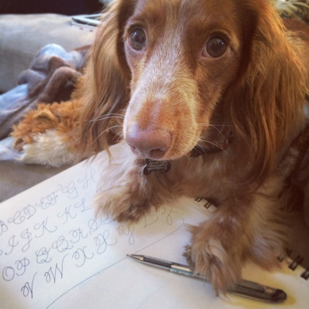 Chevy learns calligraphy